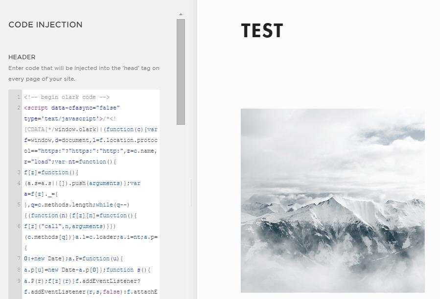 Olark code in text area