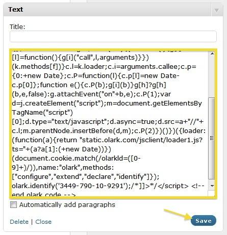 Olark code in text widget